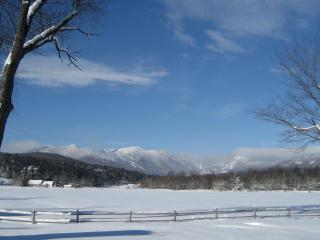 Magnificient Stowe Condo-Unsurpassed View-Sleeps 6 - Stowe vacation rentals