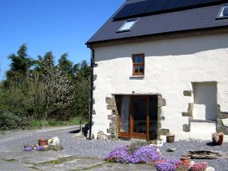 1 bedroom Cottage with Internet Access in Aberporth - Aberporth vacation rentals
