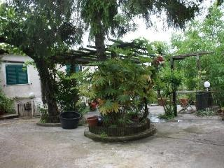 Casa in campagna con annesso frutteto - Velletri vacation rentals