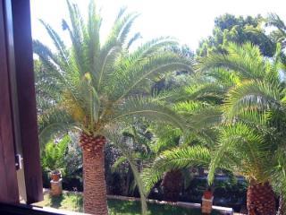 Beautiful House in Acciaroli with Garden, sleeps 6 - Acciaroli vacation rentals