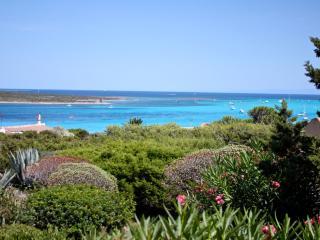 Villa La Palma 80mt from beach free Wifi, Air-con - Stintino vacation rentals