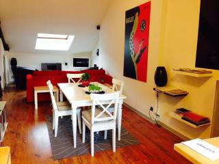 Appartement Rose - Beaune vacation rentals
