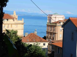 Luxury 4* Apartment for 5pax in center of Opatija Ruža - Opatija vacation rentals