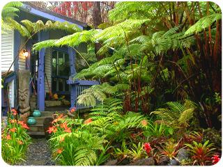 Upcountry Mauna Kilauea,Volcano Rainforest Cottage - Puna District vacation rentals