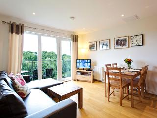 Modern Spacius City Apartment,Lift, free Wi-Fi, free Car Park, balcony. - Edinburgh vacation rentals