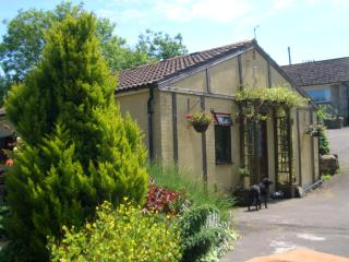 2 bedroom Bungalow with Internet Access in Winterbourne Abbas - Winterbourne Abbas vacation rentals