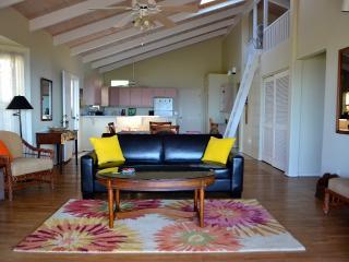 Kohala Cottage, 180° Ocean View! - Kawaihae vacation rentals