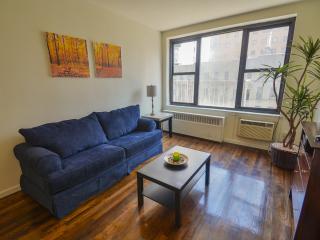 Brand New Apt, Amazing location COLUMBUS CIRCLE!! - New York City vacation rentals