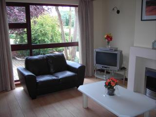 Nice 6 bedroom House in Galway - Galway vacation rentals