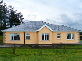 Nice Cottage with Parking Space and DVD Player - Castleisland vacation rentals