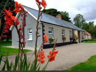 Cozy Cottage in Magherafelt with Outdoor Dining Area, sleeps 6 - Magherafelt vacation rentals