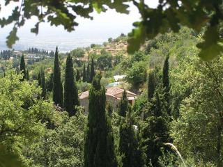 Tuscan Dream|Private|Pool|Walk to Cortona|FreeWiFi - Cortona vacation rentals