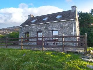 Nice 2 bedroom Cottage in Lauragh with DVD Player - Lauragh vacation rentals