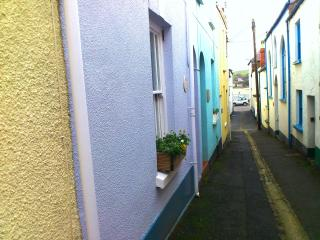 2 bedroom Cottage with Television in Appledore - Appledore vacation rentals