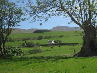 Nice Farmhouse Barn with Internet Access and Washing Machine - Llanuwchllyn vacation rentals