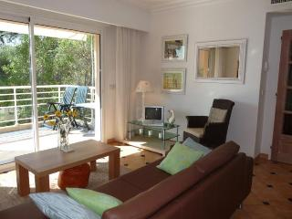 Viola- 2 Bedroom Vacation Rental with a Pool and Terrace, Cannes - Cannes vacation rentals