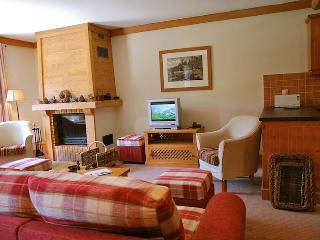Ski apartment to rent in Arc 1950 - Les Arcs vacation rentals