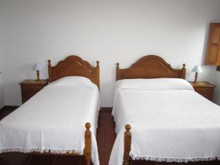 Convenient Condo with Internet Access and Wireless Internet - Viana do Castelo vacation rentals
