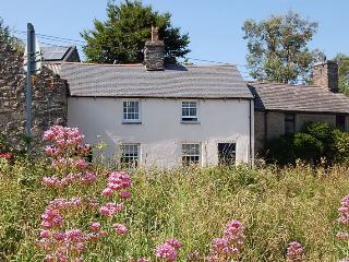 Rhine Cottage Rural Haven - Tywyn vacation rentals