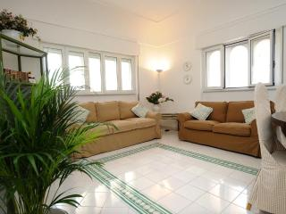 Apt. Terrace Amalfi Centre - Amalfi vacation rentals