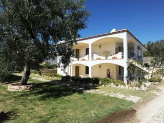Case Vacanze L'Uliveto - Mattinata vacation rentals
