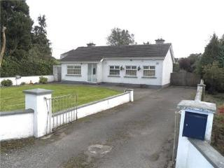 Derry House, Donadea, Kildare - Maynooth vacation rentals