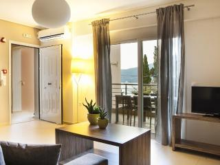 Perfect 2 bedroom Sami Apartment with A/C - Sami vacation rentals