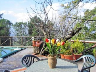 Cozy House in San Baronto with Deck, sleeps 4 - San Baronto vacation rentals