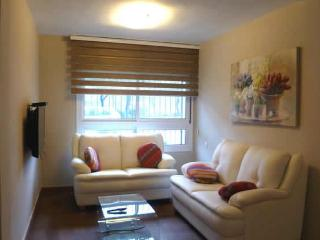 Renovated near Emek and new train station compound - Jerusalem vacation rentals