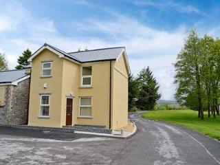 Nice House with DVD Player and Washing Machine - Pontsticill vacation rentals
