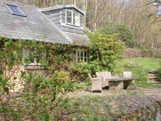 Perfect House with DVD Player and Washing Machine - Llanfyrnach vacation rentals