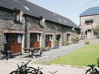 Nice House with DVD Player and Washing Machine - Dartington vacation rentals