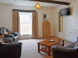 Charming 2 bedroom Llandovery House with DVD Player - Llandovery vacation rentals