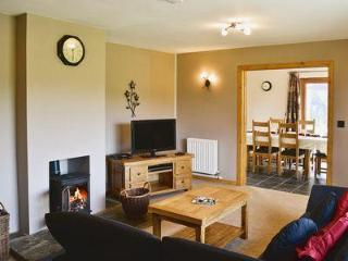Wonderful House with DVD Player and Washing Machine - Kerry vacation rentals