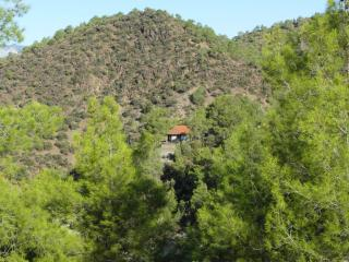 Pine Forest Cottage for family, friends, couples. - Limassol vacation rentals