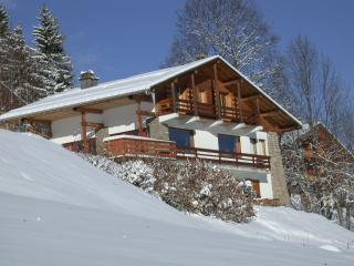Spacious Chalet with Internet Access and Satellite Or Cable TV - Combloux vacation rentals