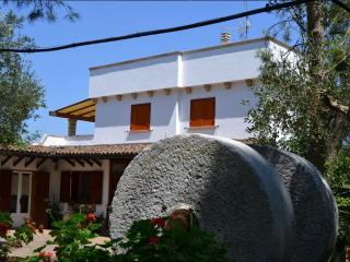Nice 1 bedroom Farmhouse Barn in Specchia - Specchia vacation rentals