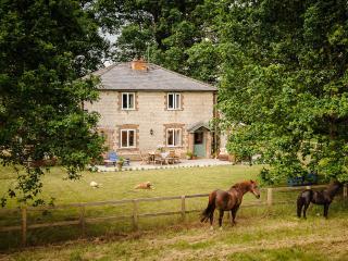 Oak Tree Cottage - Swaffham vacation rentals