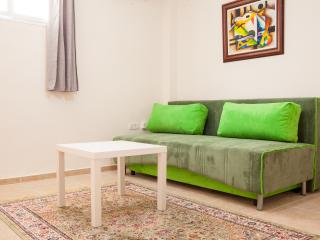 Eden One Bedroom Apt. with private Rooftop Terrace - Tel Aviv vacation rentals