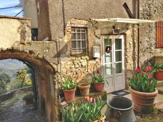 Adorable, old fashioned house in medieval Tuscan village with private pool and garden, sleeps 6 - Lucca vacation rentals