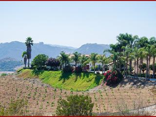 Fallbrook Mediterranean Estate, Home & Guest House - Fallbrook vacation rentals