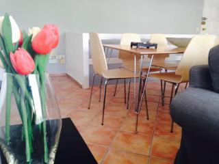 Recently refurbished duplex  for Rent in Marbella - Marbella vacation rentals