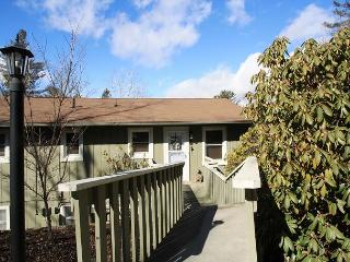 Village Green C5 a tastefully decorated 3 bedroom condo in town Blowing Rock. - Blowing Rock vacation rentals