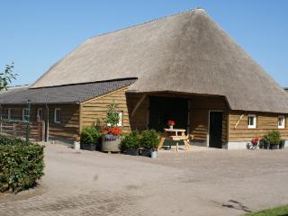 Nice Farmhouse Barn with Internet Access and Central Heating - Haghorst vacation rentals