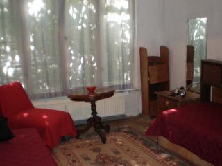 Apartamento entero hasta 4 personas - Sofia vacation rentals