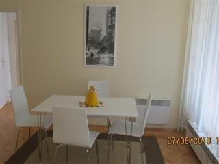 Sunny, spacious modern apartment - Republic of Macedonia vacation rentals