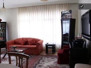 At the center of Ankara (embassy) - Ankara vacation rentals