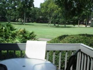 Spacious Villa-Value Rate, Free Bikes,Beach,Golf - Hilton Head vacation rentals