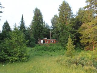 3BR,Sleeps11,Woodstove,Wifi,Pine,Lakefront cottage - Bracebridge vacation rentals
