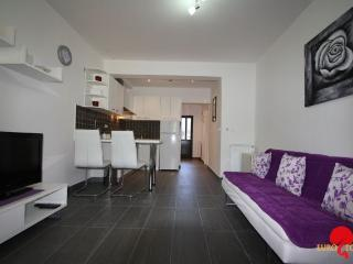 Beautiful 1 bedroom Condo in Porec - Porec vacation rentals